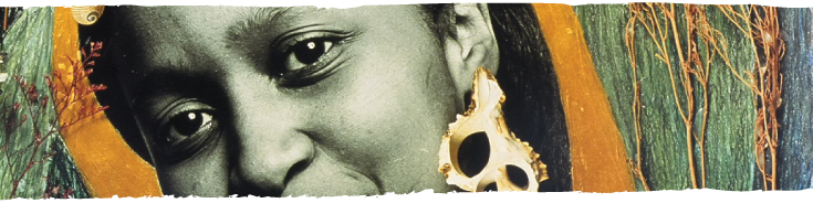 art image with a closeup of the eyes of an african american woman